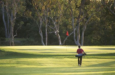 DFW best golf clubs / country clubs